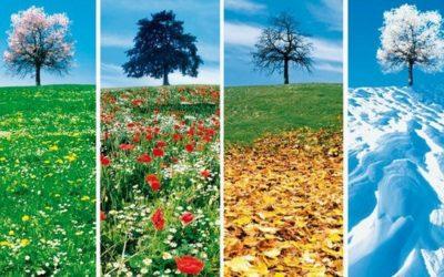 10 techniques pour remplir vos saisons creuses… pendant que les autres propriétaires hibernent…